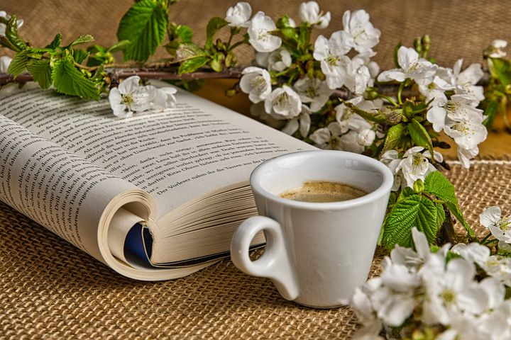 """Lire """"La vie cachée de Mina M"""" et siroter un café sur la place de l'hôtel de ville de Frontignan."""